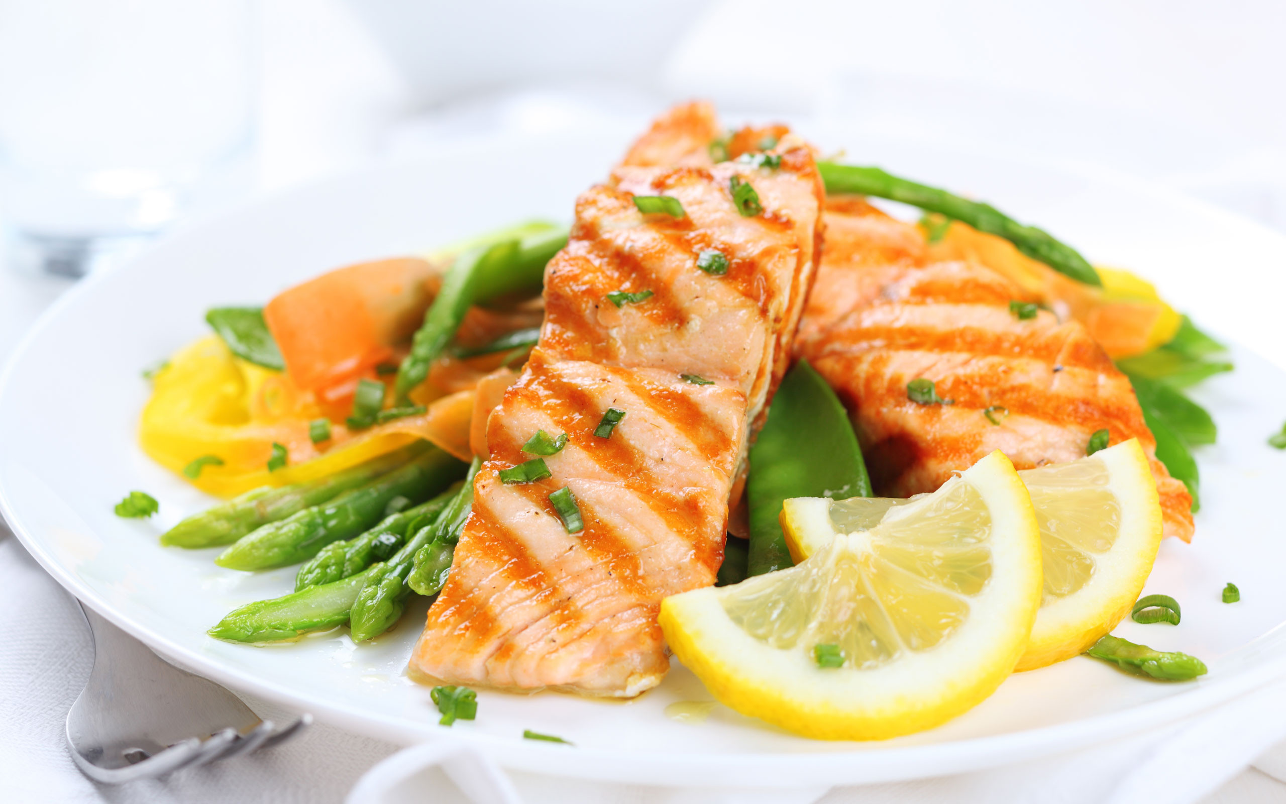 salmon-meal